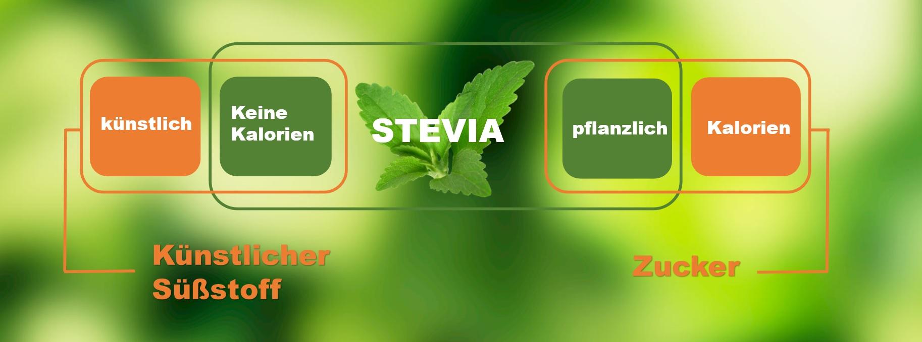 stevia süssung