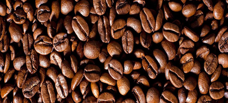 Muntermacher Wachmacher Koffein GoMo ENERGY